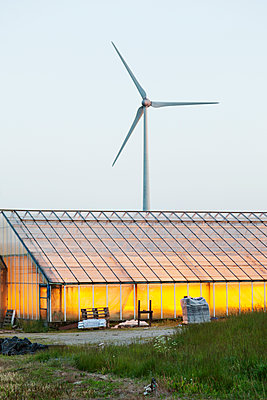 Greenhouse against windmill - p312m1551691 by Scandinav Images