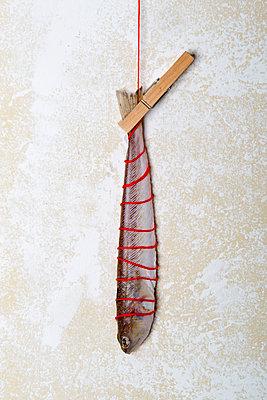 p451m1563654 by Anja Weber-Decker