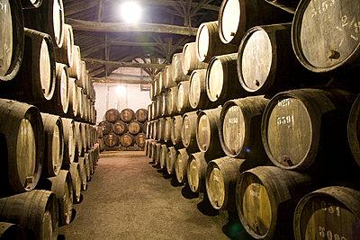 Wine barrels in cellar - p4903389 by Tobias Thomassetti