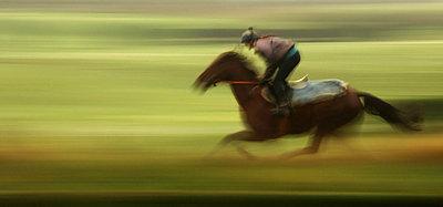 Pferderennen - p974m661443 von Volker Banken