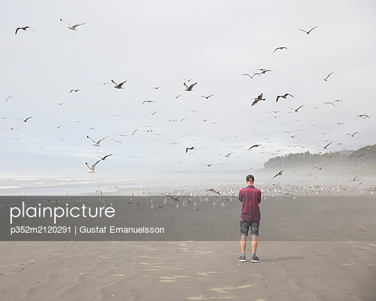 Man on a beach with seagulls - p352m2120291 by Gustaf Emanuelsson