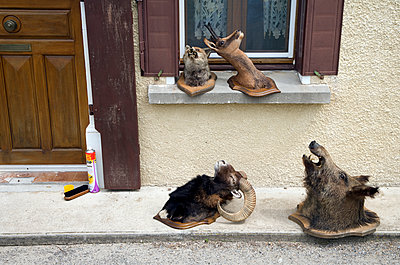 Hunting trophies in front of house - p265m1131547 by Oote Boe