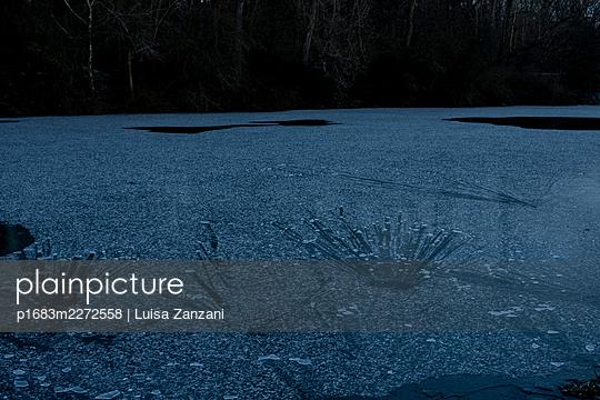 Traces on ice - p1683m2272558 by Luisa Zanzani