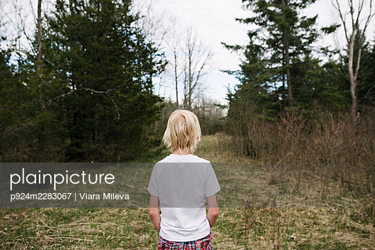 Canada, Ontario, Kingston, Rear view of boy in forest - p924m2283067 by Viara Mileva