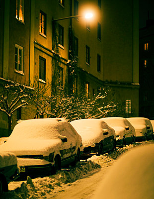 Snow-covered cars on a street - p31224146f by Susanne Walstrom