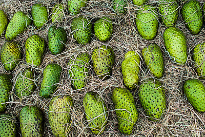High angle close up of fresh green soursop fruit for sale at a market. - p1100m2164729 by Mint Images