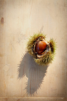 Chestnuts - p464m754744 by Elektrons 08