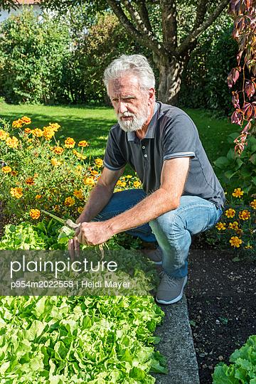 Gartenarbeit - p954m2022558 von Heidi Mayer