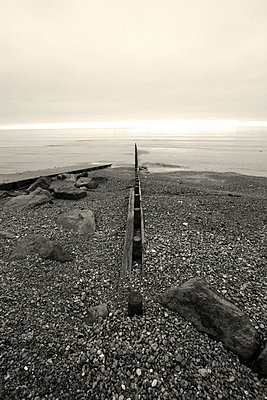 Groyne with a view out to sea in Sussex - p3313113 by Gail Symes