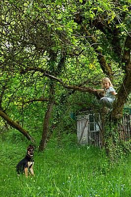 Mit Hund draußen - p454m2200605 von Lubitz + Dorner