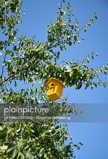 Yellow birdhouse - p1198m2291809 by Guenther Schwering