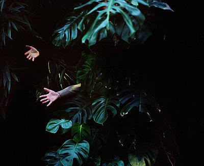 Teenager hidded in leaves - p453m2149761 by Mylène Blanc