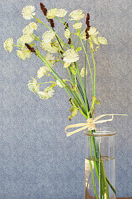 Twig of flowers in a vase - p4730141f by Stock4B