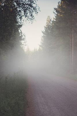 forest road - p1323m2015139 von Sarah Toure