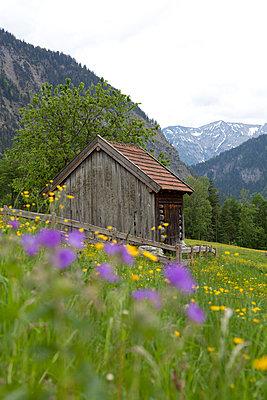 Berghütte - p441m886041 von Maria Dorner