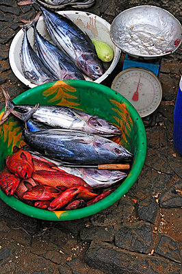 Fish market - p7260034 by Katarzyna Zommer