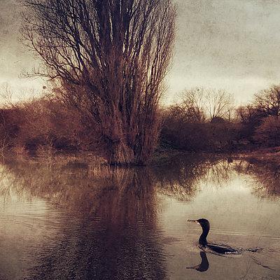 The Drowning World Part V - p1633m2209083 by Bernd Webler