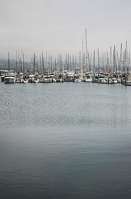 Boats in Santa Barbara Harbor, California, USA - p694m1175517 by Eric Schwortz