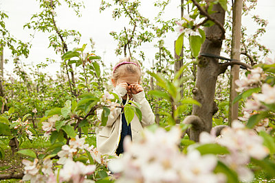 Girl at apple plantation - p902m1021358 by Mölleken