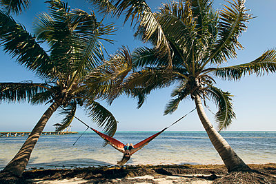 A Young Woman in a hammock is framed by two palm trees - p343m1446843 by Evgeny Vasenev