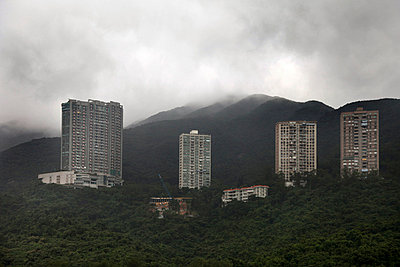 Hong Kong Towers in the forest - p6640086 by Yom Lam