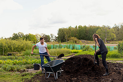 Young couple digging in garden - p312m2217099 by Christian Ferm