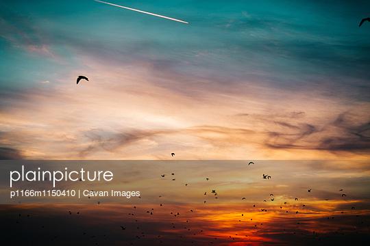 p1166m1150410 von Cavan Images
