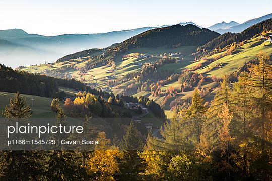 p1166m1545729 von Cavan Social
