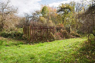 Garten - p171m955873 von Rolau