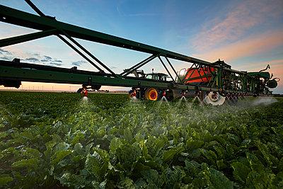 Crop spraying at dusk - p719m1446433 by Rudi Sebastian