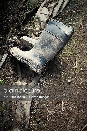 p1166m1151398 von Cavan Images