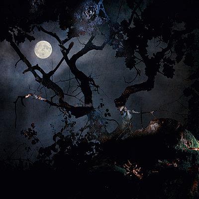 Another Sleepless Night - p1633m2208907 by Bernd Webler
