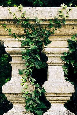 Barbed balustrade - p1657m2301066 by Kornelia Rumberg