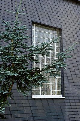 Window of glass bricks - p949m856267 by Frauke Schumann