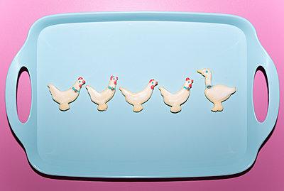 Four chicken, one goose - p454m2210186 by Lubitz + Dorner