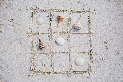 Shells in sandy frame - p312m1107493f by Anna Kern
