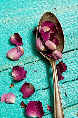 Dry rose petals - p451m984156 by Anja Weber-Decker