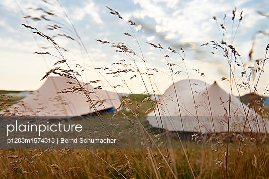p1203m1574313 by Bernd Schumacher