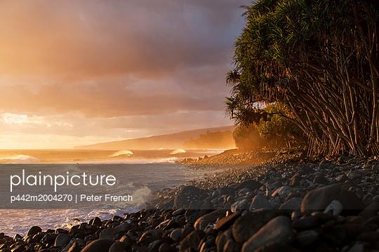 p442m2004270 von Peter French