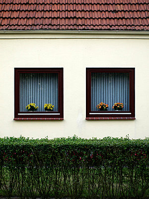 House windows - p0390336 by Christine Höfelmeyer