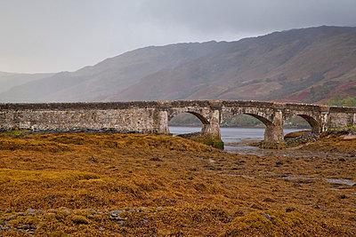 Brücke im schottischen Hochland - p3300215 von Harald Braun