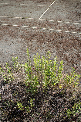 Tennisplatz - p403m915917 von Helge Sauber