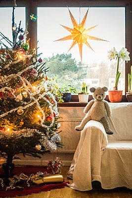 Teddybär neben einem Weihnachtsbaum - p1418m1572371 von Jan Håkan Dahlström