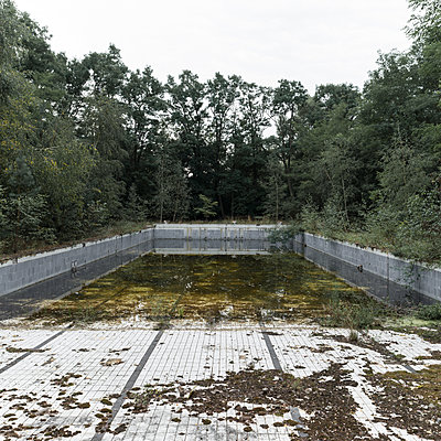 Decayed pool in the forest - p1624m2223731 by Gabriela Torres Ruiz