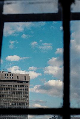 Windowpane - p1047m953673 by Sally Mundy