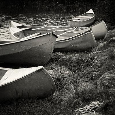 Five Boats, Study 1 - p1154m1057861 by Tom Hogan