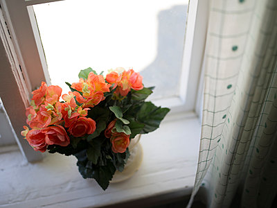 Plastic flowers on windowsill - p945m1161595 by aurelia frey
