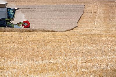 Traktor - p1057m1161695 von Stephen Shepherd