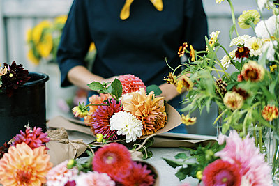 Female business owner and flower farmer arranging dahlia bouquets - p1166m2207847 by Cavan Images