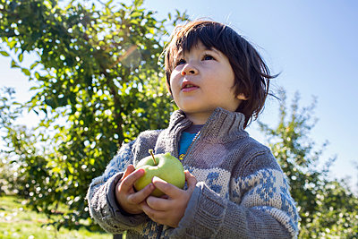 Holding an Apple - p535m947672 by Michelle Gibson
